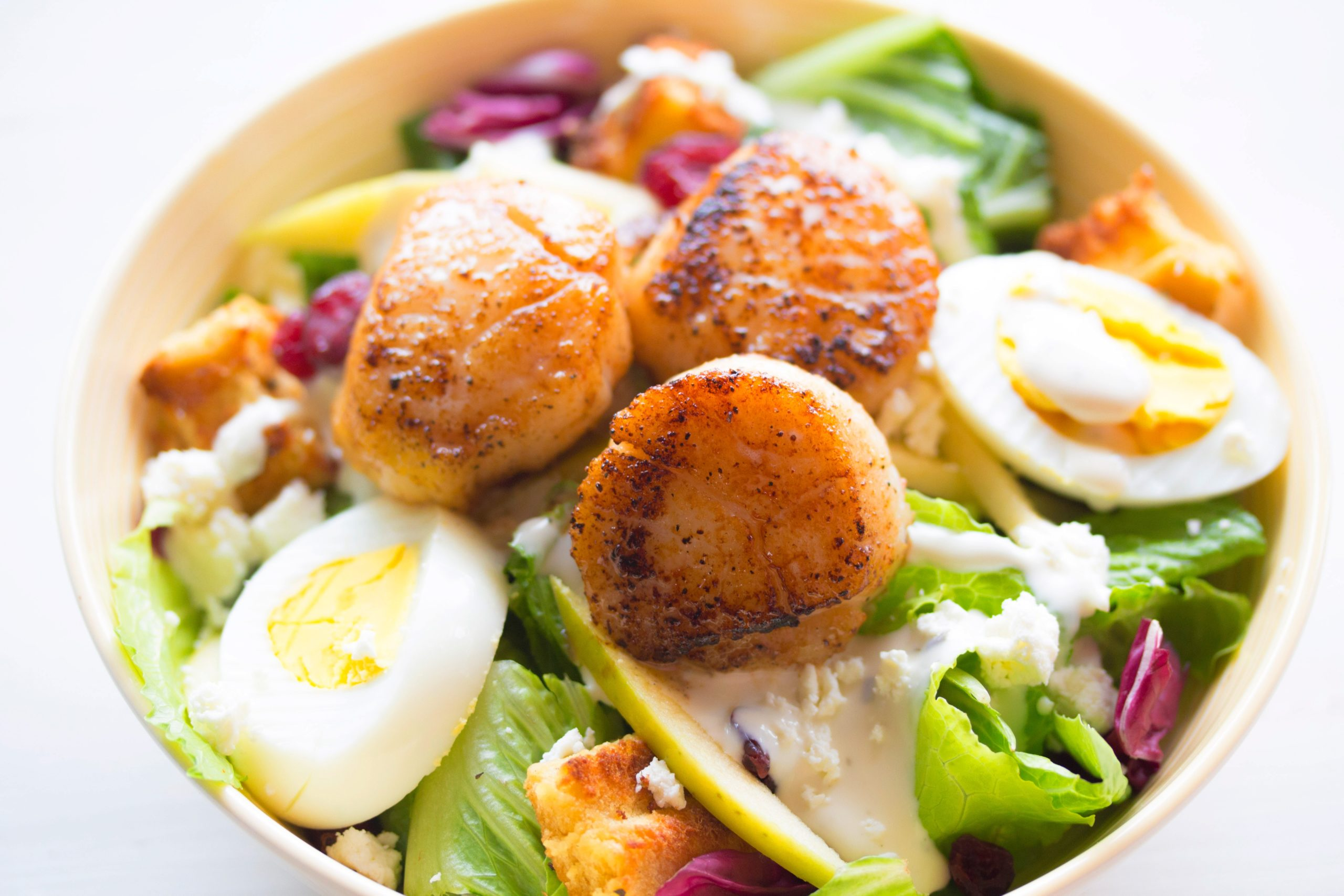 What Are Scallops?